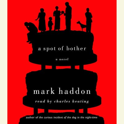 A Spot of Bother by Mark Haddon audiobook