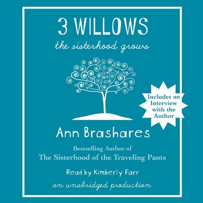 3 Willows by Ann Brashares audiobook