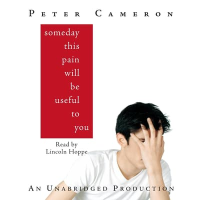 Someday This Pain Will Be Useful to You by Peter Cameron audiobook