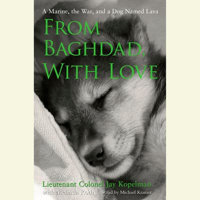 From Baghdad, With Love by Jay Kopelman audiobook