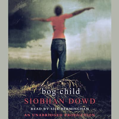 Bog Child by Siobhan Dowd audiobook