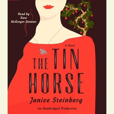 The Tin Horse by Janice Steinberg audiobook