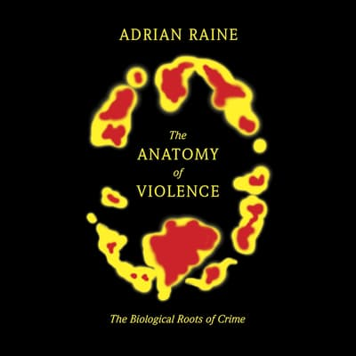 The Anatomy of Violence by Adrian Raine audiobook