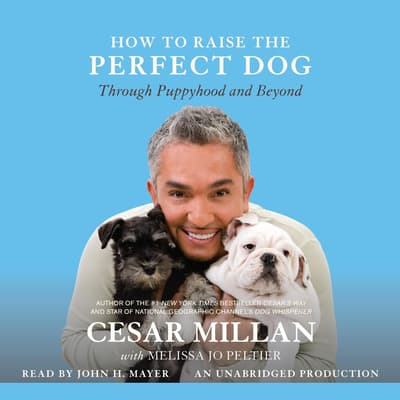 How to Raise the Perfect Dog by Cesar Millan audiobook
