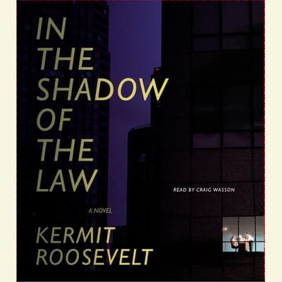 In the Shadow of the Law by Kermit Roosevelt audiobook