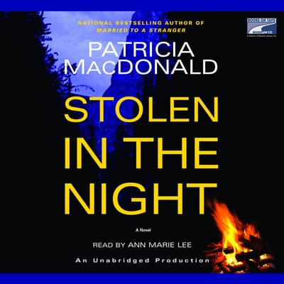 Stolen in the Night by Patricia MacDonald audiobook