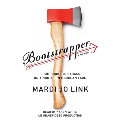 Bootstrapper by Mardi Jo Link audiobook