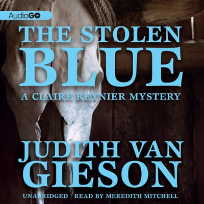The Stolen Blue by Judith Van Gieson audiobook