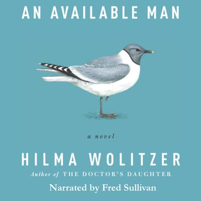 An Available Man by Hilma Wolitzer audiobook