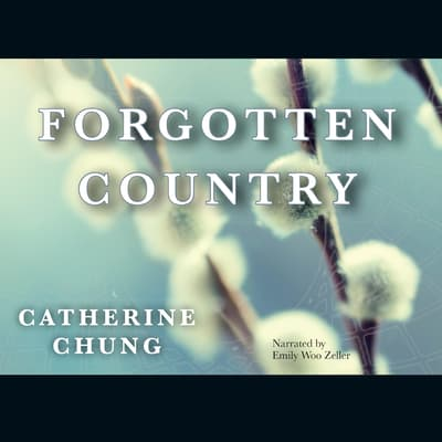 Forgotten Country by Catherine Chung audiobook