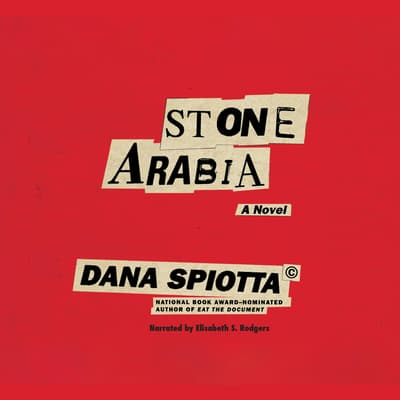 Stone Arabia by Dana Spiotta audiobook