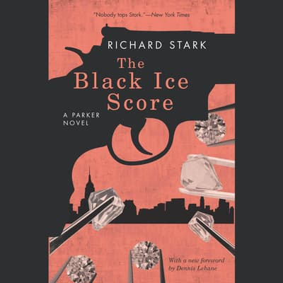 The Black Ice Score by Donald E. Westlake audiobook