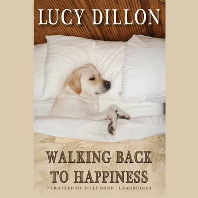 Walking Back to Happiness by Lucy Dillon audiobook
