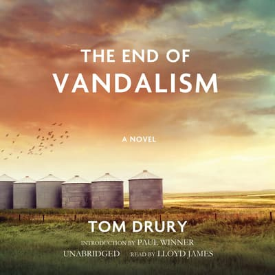 The End of Vandalism by Tom Drury audiobook