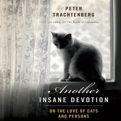 Another Insane Devotion by Peter Trachtenberg audiobook