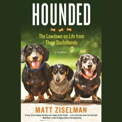 Hounded by Matt Ziselman audiobook