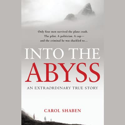 Into the Abyss by Carol Shaben audiobook