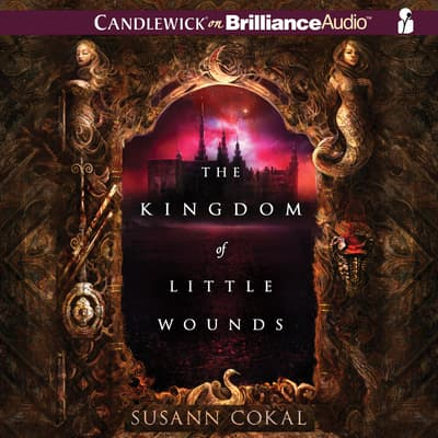 The Kingdom of Little Wounds by Susann Cokal audiobook