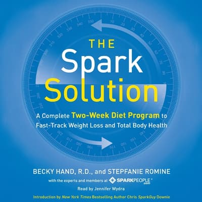 The Spark Solution by Becky Hand audiobook