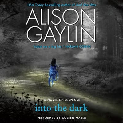 Into the Dark by Alison Gaylin audiobook