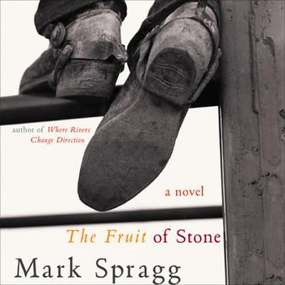 The Fruit of Stone by Mark Spragg audiobook