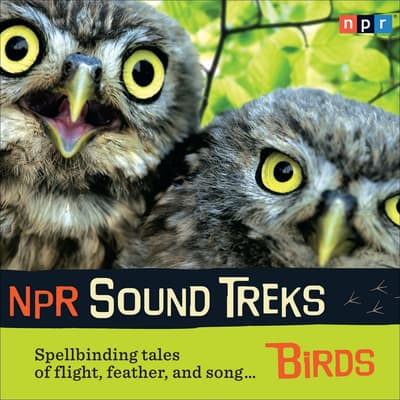 NPR Sound Treks: Birds by NPR audiobook