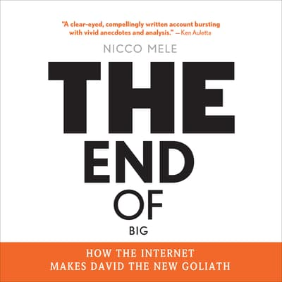 The End of Big by Nicco Mele audiobook