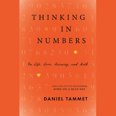 Thinking In Numbers by Daniel Tammet audiobook