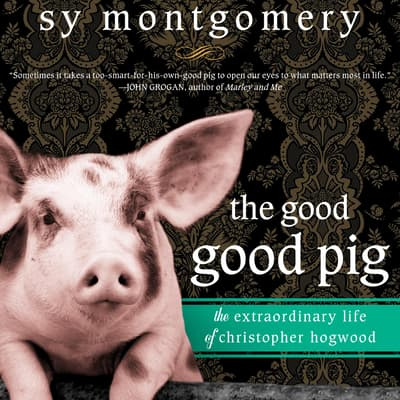 The Good Good Pig by Sy Montgomery audiobook