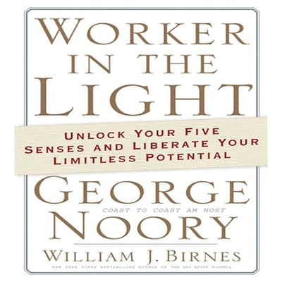 Worker in the Light by George Noory audiobook