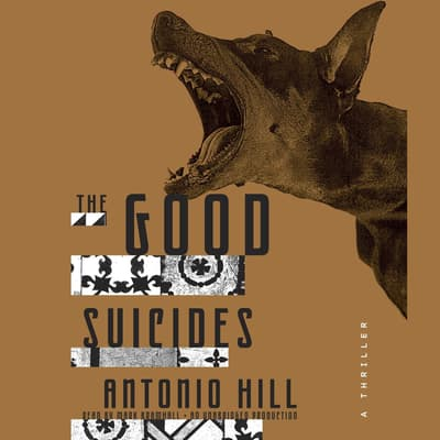 The Good Suicides by Antonio Hill audiobook