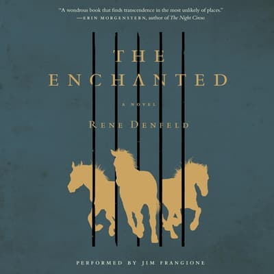 The Enchanted by Rene Denfeld audiobook
