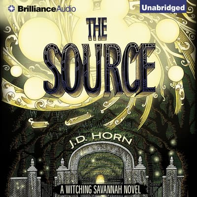 The Source by J. D. Horn audiobook