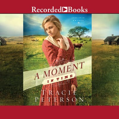 A Moment in Time by Tracie Peterson audiobook