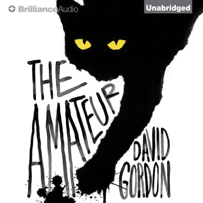The Amateur by David Gordon audiobook