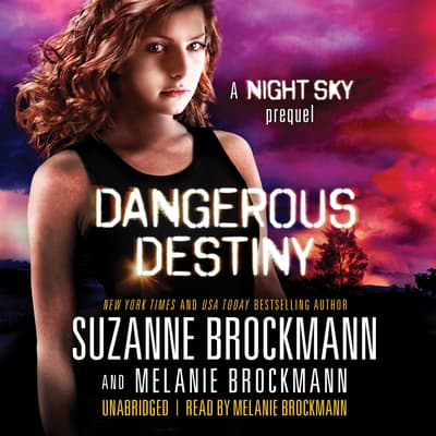 Dangerous Destiny by Suzanne Brockmann audiobook
