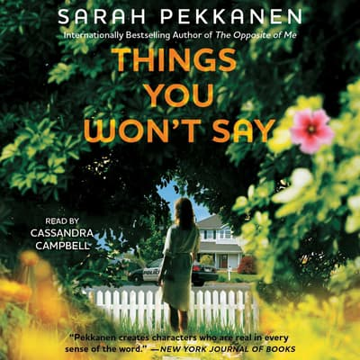 Things You Won't Say by Sarah Pekkanen audiobook