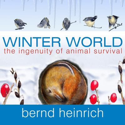 Winter World by Bernd Heinrich audiobook