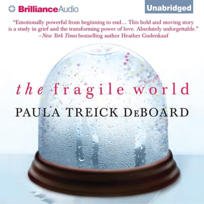 The Fragile World by Paula Treick DeBoard audiobook