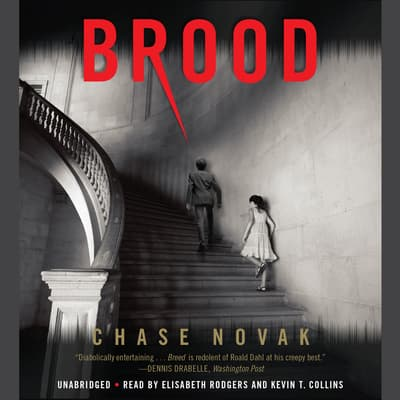 Brood by Chase Novak audiobook
