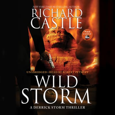 Wild Storm by Richard Castle audiobook