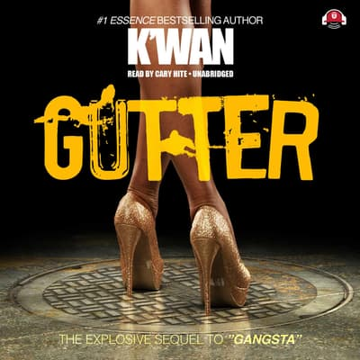 Gutter by K'wan audiobook