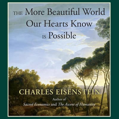 The More Beautiful World Our Hearts Know Is Possible by Charles Eisenstein audiobook