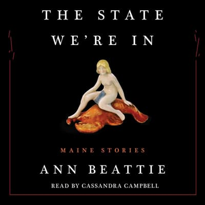 The State We're In by Ann Beattie audiobook