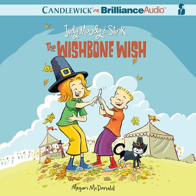 Judy Moody & Stink: The Wishbone Wish by Megan McDonald audiobook
