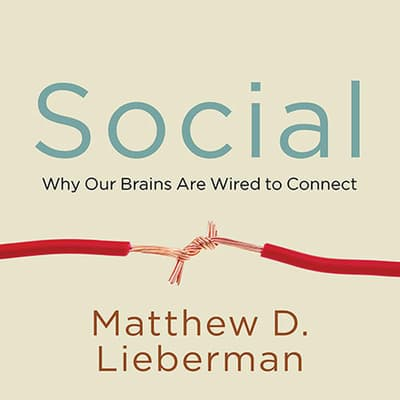 Social by Matthew D. Lieberman audiobook