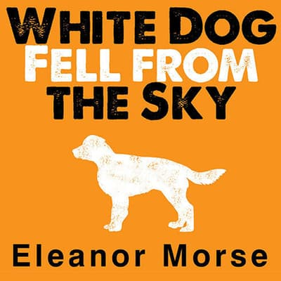 White Dog Fell from the Sky by Eleanor Morse audiobook