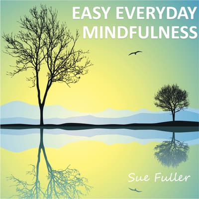 Easy Everyday Mindfulness by Sue Fuller audiobook