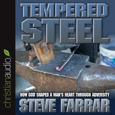 Tempered Steel by Steve Farrar audiobook