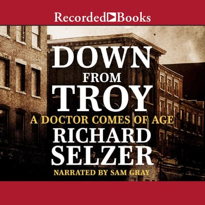 Down from Troy by Richard Selzer audiobook